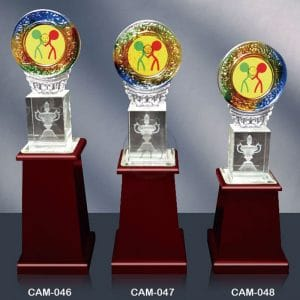 CAM 水晶木質獎座價格