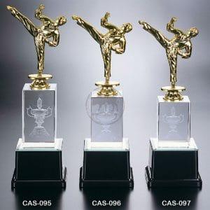 CAS 水晶燈光獎座樣式