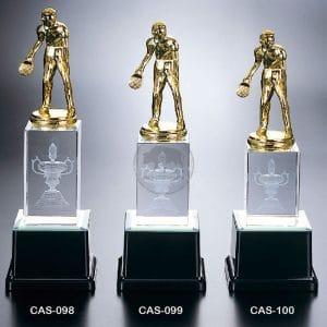 CAS 水晶燈光獎座價格