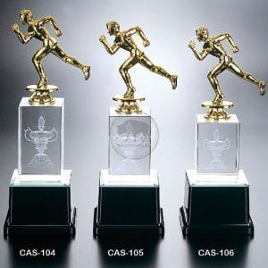 CAS 水晶燈光獎座價錢