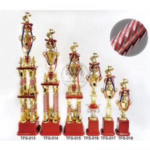TFS 音樂獎杯購買