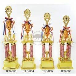 TFS 星星獎盃