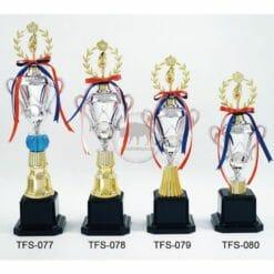TFS 台灣獎盃訂做