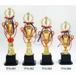 TFS 台灣獎盃訂作