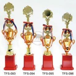 TFS 第一名獎盃