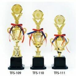 TFS 才藝獎盃