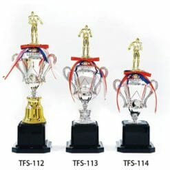 TFS 讚獎盃