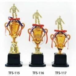 TFS 刻字獎盃