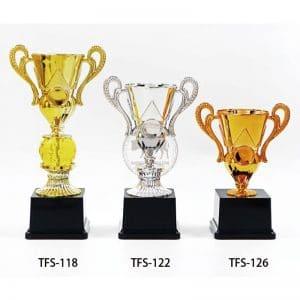 TFS 便宜獎盃