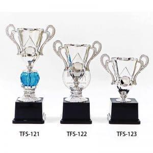 TFS 台中獎盃