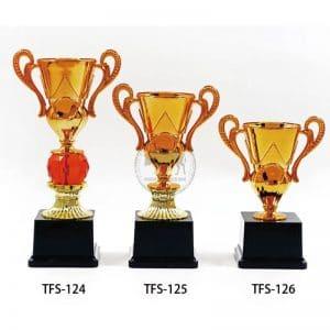 TFS 台北獎盃