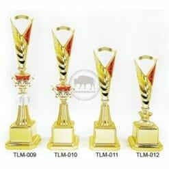 TLM 新穎獎盃
