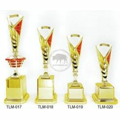 TLM 特殊獎盃