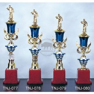 TNJ 獎盃