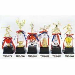 TRS 小獎盃