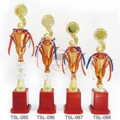 TSL 傳統獎盃