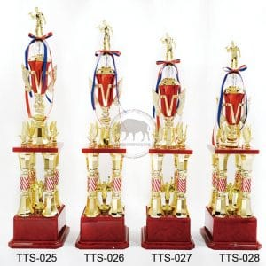 TTS 歌唱獎盃費用