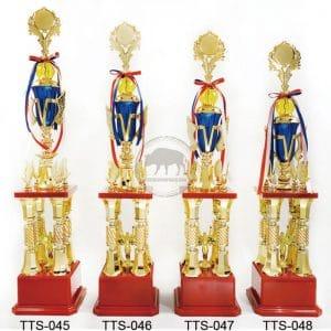 TTS 角力獎盃