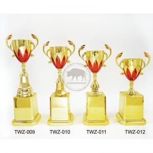 TWZ 退休獎盃