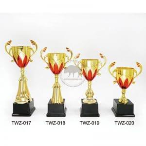 TWZ 客制獎盃