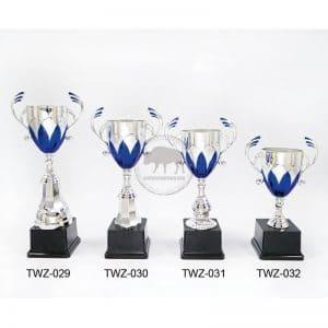 TWZ 創意獎盃
