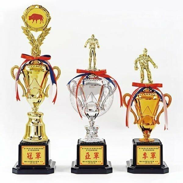 TFS S客製化獎盃