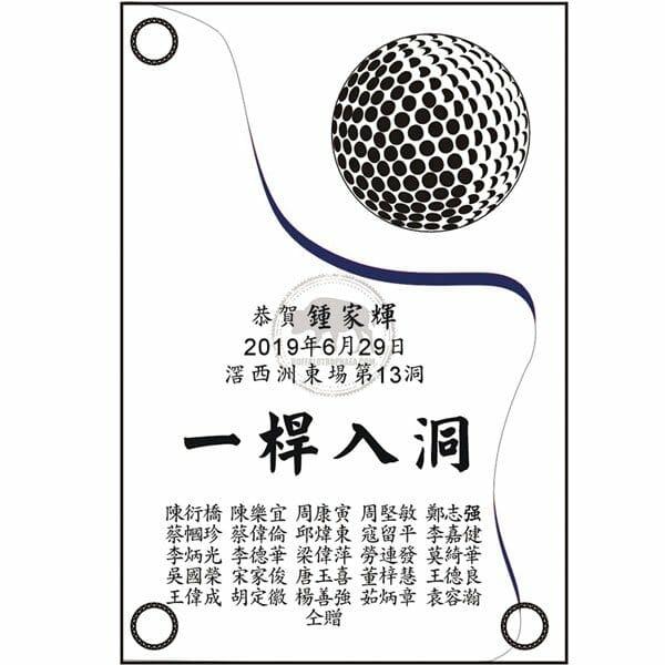NP-019-01