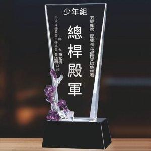 特殊便宜水晶獎盃 PF-003-G3