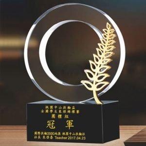 特別水晶獎盃買 PF-060-15