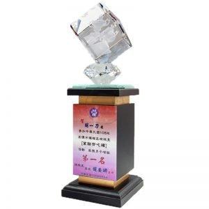 勝利水晶獎座 VK2005