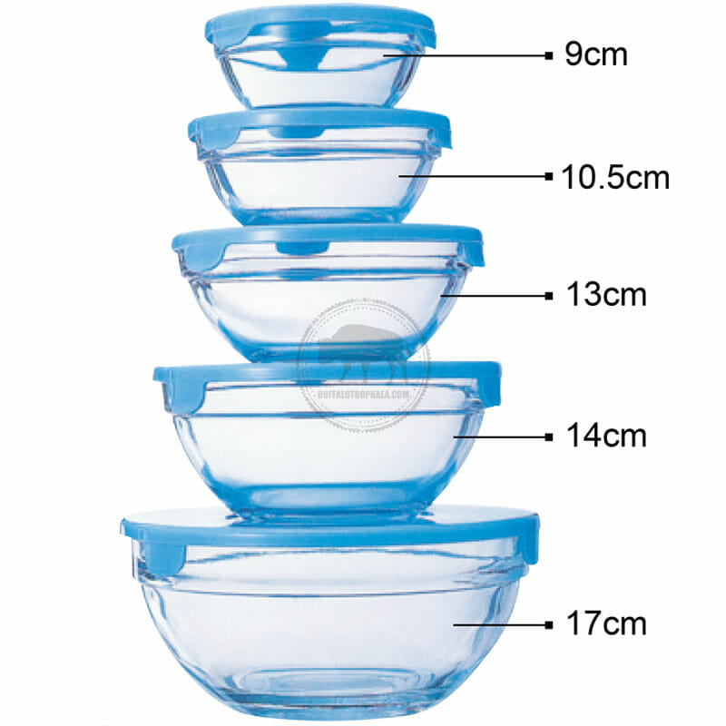 XY-CR20 五入玻璃保鮮碗